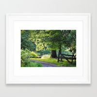 Sunshine and Shadows Framed Art Print