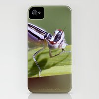 iPhone Cases featuring Dragon! by kealaphotography