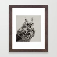 Owl   Fig. 03 Framed Art Print