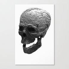 IRON SKULL Canvas Print