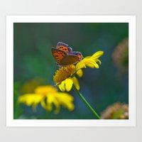 Butterfly On Yellow Flow… Art Print