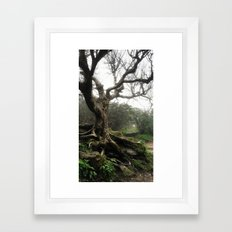 Fairy Tree Framed Art Print