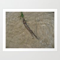 Chains In The Sea Art Print