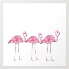 Flamingos - on white backround  Art Print