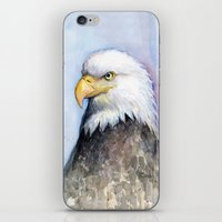 Bald Eagle Portrait Watercolor Painting Bird iPhone & iPod Skin
