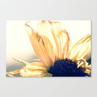 Melodious Canvas Print
