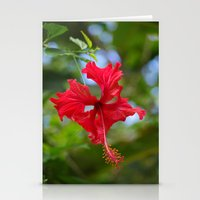 Scarlet Flower Stationery Cards