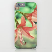 Lilly Love iPhone 6 Slim Case