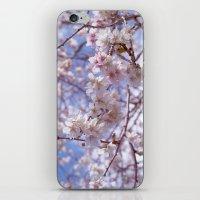 Blossom, Bloomin Blossom… iPhone & iPod Skin