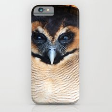 Asian wood Owl iPhone 6 Slim Case