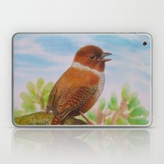 A Brown Bird Laptop & iPad Skin