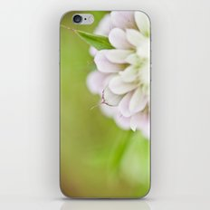 The beauty lies in the petals iPhone & iPod Skin