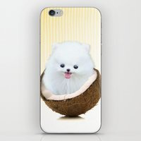 coconutty iPhone & iPod Skin