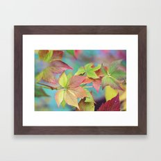 Colorful fall Framed Art Print