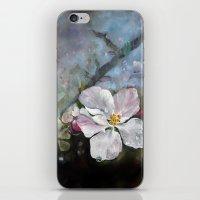 Appleblossom iPhone & iPod Skin