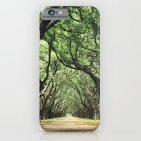 Canopy of Oaks iPhone 6 Slim Case