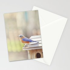 Bluebird Morning Stationery Cards