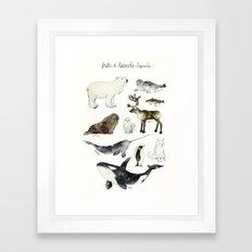 Arctic & Antarctic Animals Framed Art Print