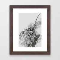 Deinonychus Framed Art Print