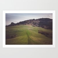 Pieniny Mountains Art Print