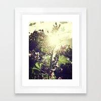 The Climb Framed Art Print