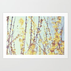 Yellow Daydreams Art Print
