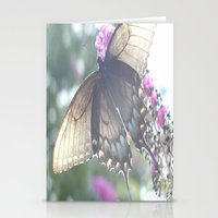 Sheer Butterfly Stationery Cards