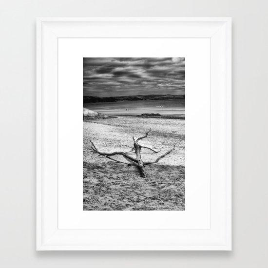 Driftwood 3 mono Framed Art Print