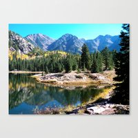 A Perfect Reflection  Canvas Print