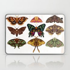 Moth Wings III Laptop & iPad Skin