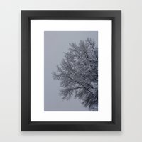 Winter Tree Framed Art Print