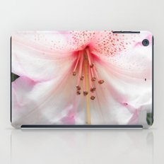 Light pink azalea or rhododendron flower. floral botanical garden photography. iPad Case