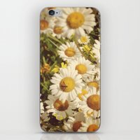 Garden Daisies iPhone & iPod Skin