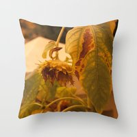 The Sun Has Set And Tomo… Throw Pillow