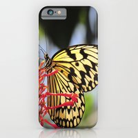 iPhone & iPod Case featuring I fly like Paper Kite by MistyAnn