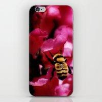 Busy Bumblebee iPhone & iPod Skin