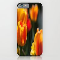 iPhone & iPod Case featuring Tulips in the Garden by Karol Livote
