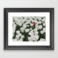 The Odd One Out Framed Art Print