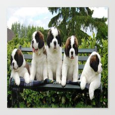 cool dogs Canvas Print