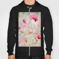 Poppy pastels Hoody
