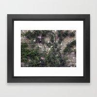 Wall Roses Framed Art Print