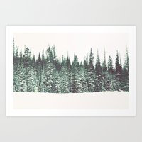 Snow On The Pines Art Print
