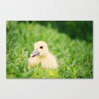 Happy-Go-Ducky Canvas Print