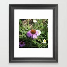 Plenty of room on top Framed Art Print