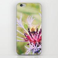 Spring Time Bumble Bee O… iPhone & iPod Skin
