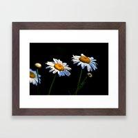 You're A Daisy Framed Art Print