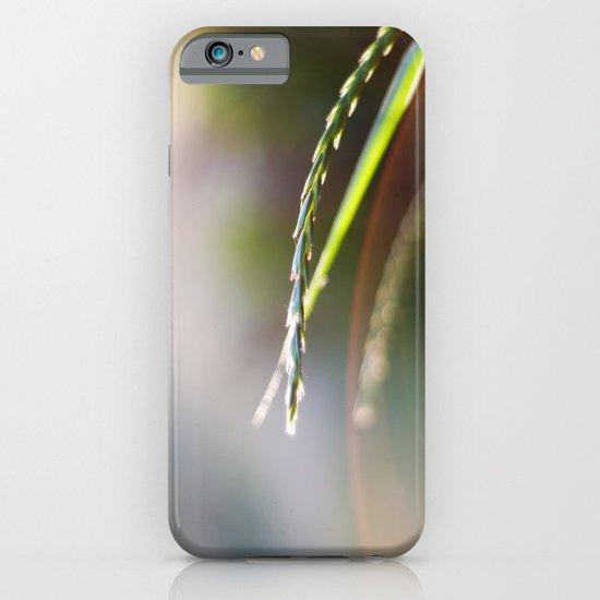 Evening Light iPhone & iPod Case