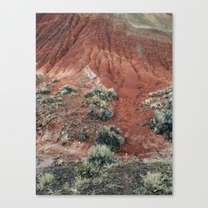 Red Hill Canvas Print