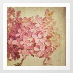 Hortensia Art Print
