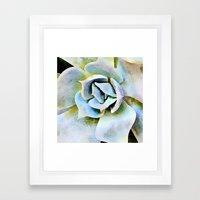 Shady Succulent Framed Art Print